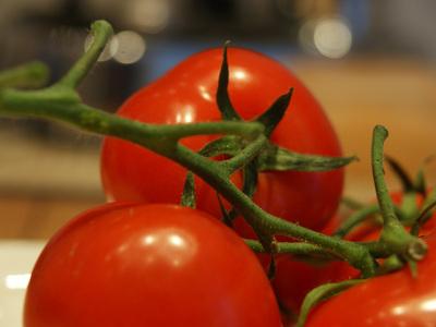 Tomaten selbst pflanzen