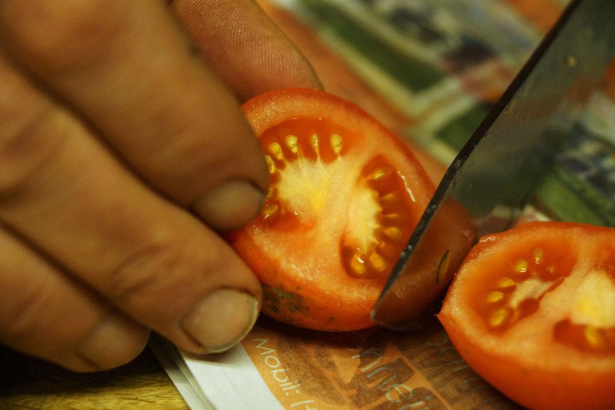 Tomate – vom Saatgut bis zur Ernte – mit Video