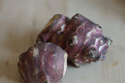 topinambur-wurzel